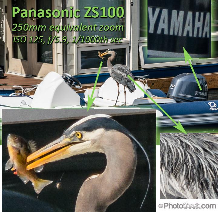 Panasonic ZS100 shot at 250mm